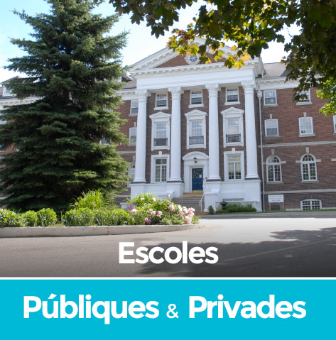 escoles públiques i privades